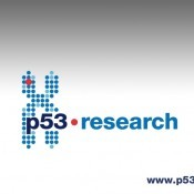 p53research